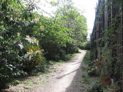 jardin 83.jpg